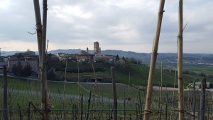 BARBARESCO LSCAPE